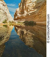 Mirror reflection - Picturesque canyon Ein-Avdat in desert...