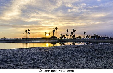 The sunrise over Sail bay in Mission Bay over the Pacific beach in San Diego, California in the United States of America. A view of the sandy beach, palm trees and beautiful saltwater bay at sunset.