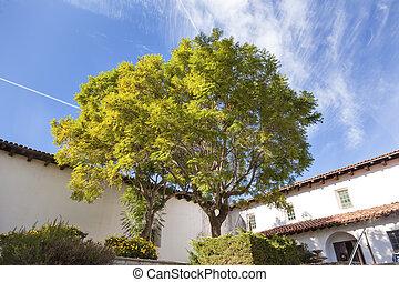 Mission San Luis Obispo de Tolosa Courtyard California - ...