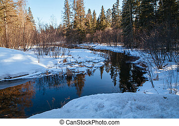 Mississippi Headwaters in Itsca National Park USA - The ...