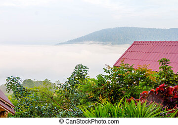 mist, bergen