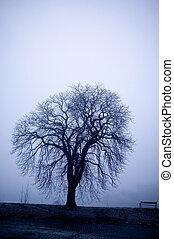 mist, boompje
