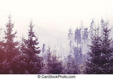 mist, bos