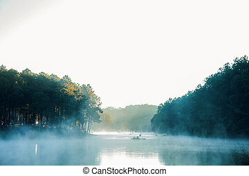 Mist in the morning with sunrise.