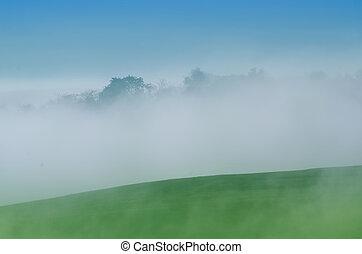 mist landscape