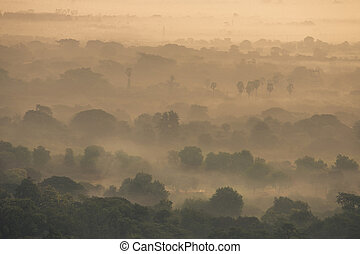 Misty of forest under warm sunlight in Mamdalay Myanmar