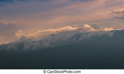 Mist mountain rainforrest at sunset, Thailand