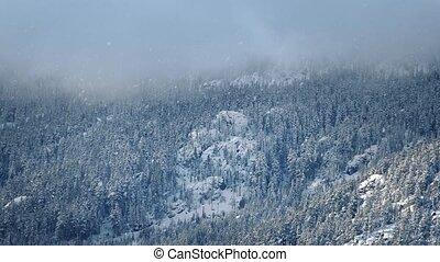 Mist On Mountain Top In Snowfall
