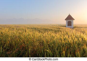 Mist on wheat field with chapel in Slovakia Tatras
