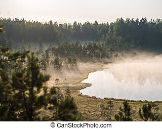 mist over a swamp and lake