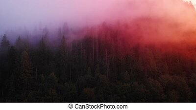 Mist over Carpathian Mountains, Illuminated in Dawn Light - ...