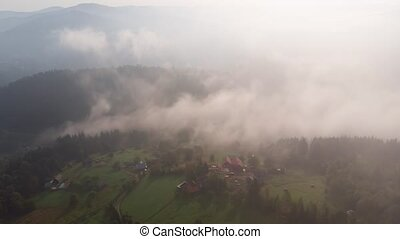 Wispy tendrils of mist rise over the picturesque slopes of the Ukrainian Carpathian Mountains in the early morning light.