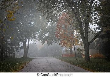 mist, straat, bomen, herfst