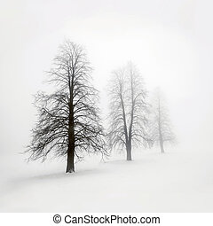 mist, winter bomen
