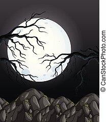 misterio, oscuridad, noche, bosque, plano de fondo