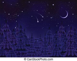 misteriosa, floresta, noturna