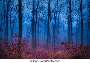 misterioso, bosque