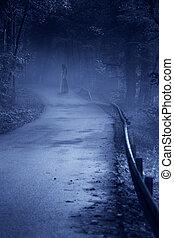 misterioso, donna, fantasma, in, vestito bianco, in, il, foresta nebbiosa, strada, vendemmia, rumore, filtro