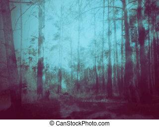 misterioso, foresta, scena