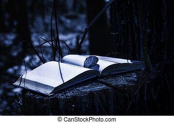 misterioso, libro, notte