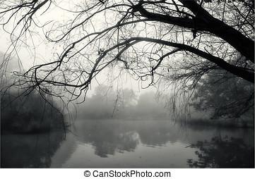 misterioso, paesaggio
