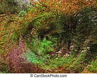 misterioso, túnel, naturaleza, espiral, flores, salvaje, plantas