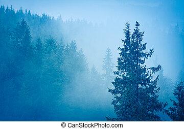 misterious, erdő