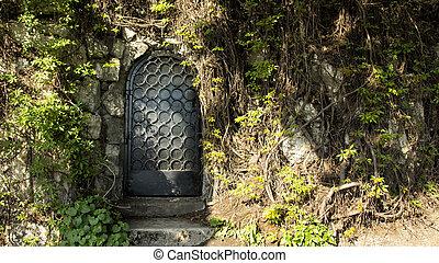 mistero, porta, foresta