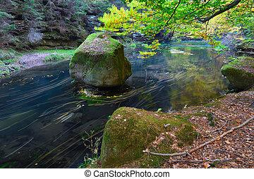 mistico, vecchio, forst, foglie, magico, autunno, river., foresta, arancia, caduto