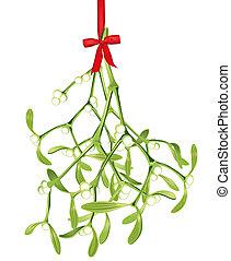 mistletoe, penduradas