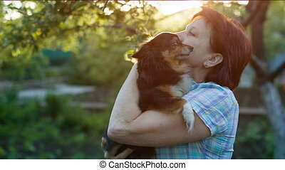 Mistress hugging a little dog - Moscow toy terrier with a...