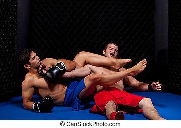 misturado, artistas marciais, luta