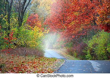 Misty autumn alley