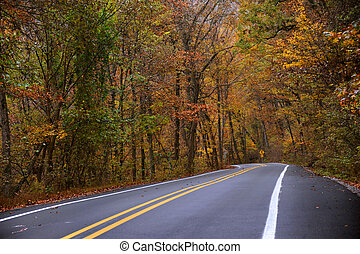 Misty Autumn Days in the Ozarks - Road sign warns of curvy ...