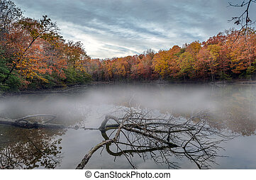 Misty Autumn Lake