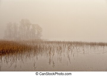 Misty autumn morning in Scandinavia