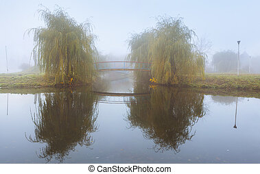 Misty autumnal landscape in the park