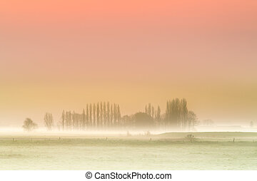 Misty dawn background