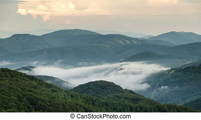 Misty evening above clouds moving in green forest valley time lapse