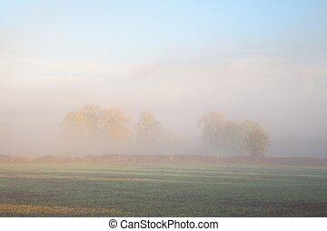 Misty farmland background - Looking over farmland through ...
