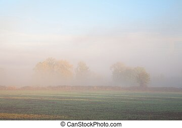 Misty farmland background - Looking over farmland through...