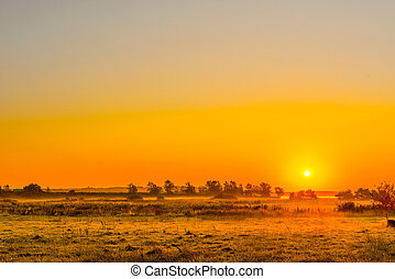 Misty field with a sunrise