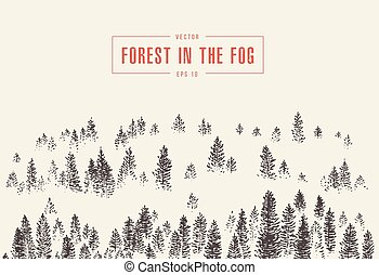 Misty fog pine forest mountain vector drawn sketch