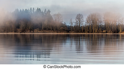 Misty Forest Across River - Tree reflected in river on misty...