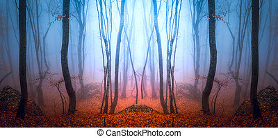 misty forest - road through misty forest, mountains, fog...