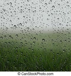 Misty green grass fields view behind wet glass