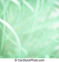 Misty green grass textured background