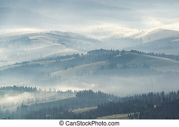 Misty hills in the morning
