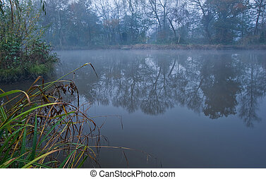 Misty lake on Autumn Fall morning
