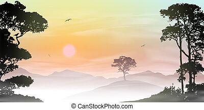 Misty Landscape - A Misty Countryside Landscape with Sunrise...
